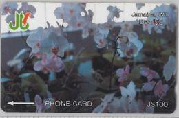 PHONE CARD - GIAMAICA (E31.39.6 - Jamaica