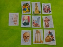 10 Images Margarine Cema N° 36-37-53-67-83-84-116-124-133-139 - Vieux Papiers