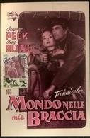 CARTOLINA IL MONDO NELLE MIE BRACCIA - Autres Collections