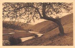 LAFORÊT - La Semois - Vresse-sur-Semois