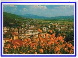 23117  CPM   : GUALDO TADINO  : Panorama  !  ACHAT DIRECT  !! - Perugia