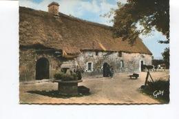 CPSM GF - CHAUMIERES BRETONNES - MELRAND CHAUMIERE DE BRAGNOLEC - Dos Vierge - Vaches - - France