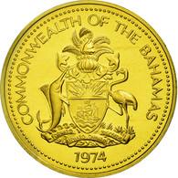 Monnaie, Bahamas, Elizabeth II, Cent, 1974, Franklin Mint, U.S.A., FDC, Laiton - Bahamas