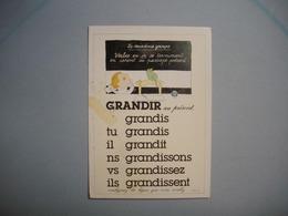 CARTE ILLUSTRATEUR  -  Illustrée Par Monique TOUVAY  -  La Conjugaison  -  Verbe Grandir  Au Présent - Illustrateurs & Photographes