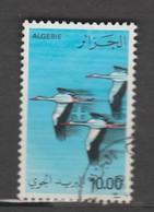 Algerie 1979  Aérien   N° 21  Oblitéré   CIGOGNE - Algeria (1962-...)