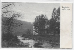 PEPINSTER (4860) Chateau Follet - Nels 96 Num 5 - Pepinster