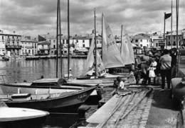 Mèze - Le Port - Voiliers - Mèze