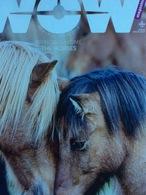 WOW Magazine (journal Islandais En Langue Anglaise - 2017) : Bringing Home The Horses - Livres, BD, Revues