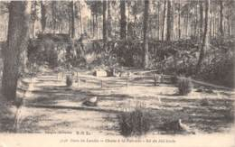 33 - Gironde - Divers / 10024 - Chasse à La Palombe - Sol Du Filet Tendu - France