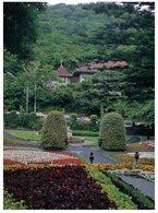 (123)  New Zealand - Wellington Botanic Garden - New Zealand