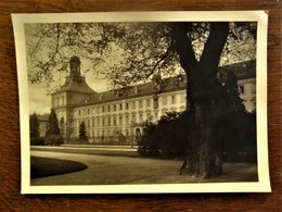 Oude Originele Foto Postkaart    FREI - BONN  Agfa   DUITSLAND - Photographs