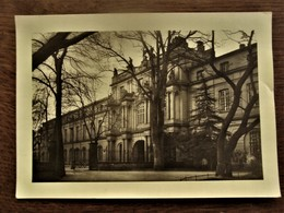 Oude Originele  Foto - Postkaart     FOTO - FREI - BONN   DUITSLAND - Lieux