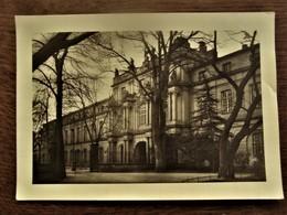 Oude Originele  Foto - Postkaart     FOTO - FREI - BONN   DUITSLAND - Lugares