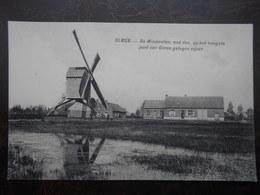 Olmen   De Windmolen - Belgique