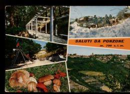 B9918 SALUTI DA PONZONE MULTIVEDUTE CON FUNGHI VG 1981 - Altre Città