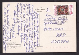 Egypt: PPC Picture Postcard To Germany, 1990s?, 1 Airmail Stamp, Card: Diving Red Sea, Camel (traces Of Use) - Egypte