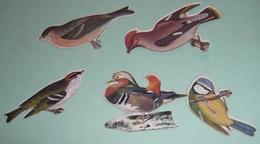 Rare Lot D'anciens Découpis Images Chromos Oiseaux Biscottes MONCEAUX Produits Biscuits - Animals