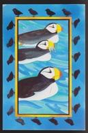 Atlantic Puffins On Greeting Card - Unused - Old Paper