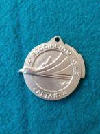 AVIAZIONE Stemma Da Giacca 4° Reggimento Aves -altair- - Aviazione