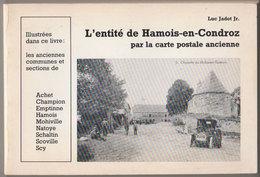 L'entité De Hamois En Condroz En Cartes Postales - Livres