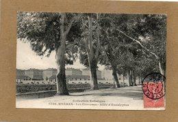 CPA - HYERES (83) - Thème : Arbre - Aspect De L'allée D'Eucalyptus En 1907 - Hyeres