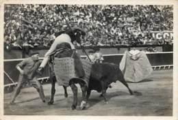PHOTO CORRIDA ORIGINALE - TAUREAUMACHIE : UN PUYAZO - Foto
