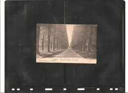 EDEGEM_ ANNO 1909_    - *  717 - Edegem