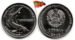 Transnistria - 1 Rouble 2018 (Russian Sturgeon - UNC - 50,000Ex.) - Moldova