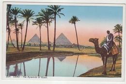 Cairo The Pyramids Of Gizeh - Pyramids