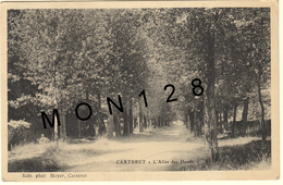 CARTERET (50)  L'ALLEE DES DOULTS - Carteret