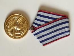 Medalla 10 Años De Servicio En Fuerzas Armadas Del Ejército Búlgaro. Bulgaria Comunista. Años '70. Ejército Búlgaro - Medallas Y Condecoraciones