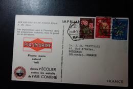 Carte Pub Plasmarine Biomarine MACAO TB - 1999-... Chinese Admnistrative Region