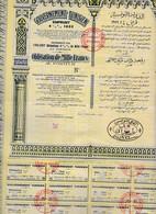Th4  GOUVERNEMENT : TUNISIEN - Obligation De 1000 Frs1932N°28 - Aandelen