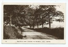 Nottingham Rp Squire's Lane Leading To Bulwell Hall Posted 1912 - Nottingham