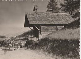 VALBERG (06). La Chapelle St-Bernard De Menchon. Vaches (Agriculture: Elevage) - Autres Communes