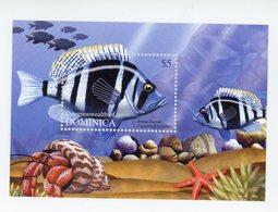 Dominica Commonw. 2004-Poisson-YT B489***MNH - Fische
