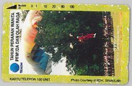 PHONE CARD - INDONESIA (E39.48A.2 - Indonesia