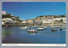 UK.- Inner Harbour, Torquay, Devon. Zeilschepen. Haven. Photo: David Hastilow.. - Torquay