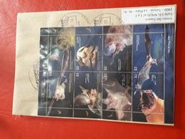 L'Argentine Enveloppe Circulé Avec Hb Des Chauves - Souris - Argentinien