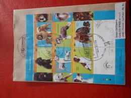 L'Argentine Enveloppe Circulé Avec Hb Des Chiens - Argentinië