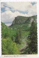 Spearfish Canyon, Black Hills, South Dakota, Unused Postcard [22524] - Etats-Unis