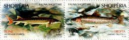 Albania Stamps 2018. Fauna: Fish. Acipenser Sturio; Salmo L. Set MNH - Albania