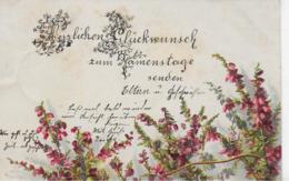 AK 0108  Herzlichen Glückwunsch Zum Namenstage - Glitzerkarte Um 1901 - Feiern & Feste