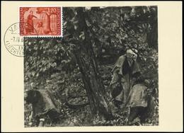 1960, Liechtenstein, 396 MK, Brief - Liechtenstein