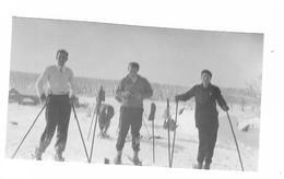 3 Photos Originales  Champ Du Feu - Ski En 1931 - Rothau