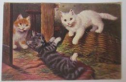 Katzen, Katzen, Korb,        1909 ♥  - Vögel