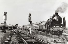 Dieppe 231 G 558  Photo 21 X 15 - Trains