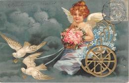 5 CP ANGELOTS Toutes Ont Voyagé En 1905. Scans Rectos Et Versos. Bon état - Cartes Postales