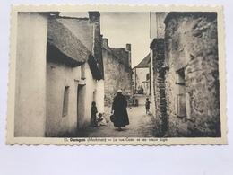 Damgan ( Morbihan ) - La Rue Goëc Et Ses Vieux Logis - Damgan