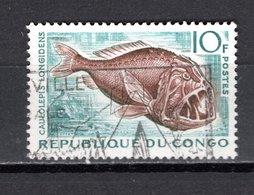 CONGO   N° 147  OBLITERE  COTE  0.45€   POISSON  ANIMAUX - Oblitérés